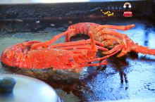 新西兰的卡库拉,一个位于南太平洋边上的小镇~因为这里的龙虾很有名的,所以此行,我们还是来到了这里。嗯
