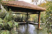 从紫清湖鳄鱼乐园进来,一边寻找鳄鱼,一边溜平衡车,这里太适合玩车,坡多,人少,路宽敞。溜着溜着,看到