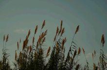 疫情总会过去·武汉加油,拍于西昌 西昌·凉山