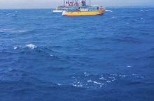 斯里兰卡之旅| 美蕊沙出海观鲸    感觉非常不错的一个体验项目,就是价格差距很大。来回五个小时,只