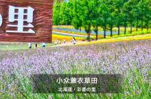 大概是富良野最小众的薰衣草田了,在富田没拍够的过来补照片,一个人独霸整个花田的感觉很棒!最佳季节:7