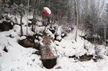 雪谷,穿越起点。
