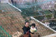 《来自杭州的诱惑:我们逗会鸡吧……》  我是孤独浪子,希望我的拍拍让您有所收获。 漫游神州31载,已