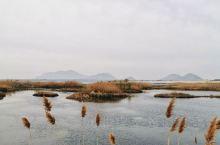 清明假期孟子湖