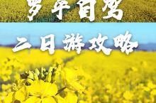 【云南罗平旅游‖云之南端 花之彼岸!罗平二日自驾游攻略】 每年的春节二三月间,看到油菜花开得那么美,