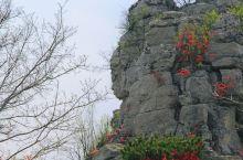 你见过比这更像的天然大佛吗?  在岱崮神佛崮,我一眼就看到了这尊天然佛像,面朝东方,眉慈目秀。  佛