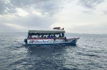 约旦的这一片海域提供一种玻璃底的船,就是大家在船上围坐一圈,透过玻璃底,看船下的珊瑚和之前沉在这片海
