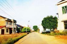 乡村景色(2)