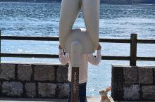 探访最萌的日本兔子岛◎广岛大久野岛 大久野岛座落于濑户内海艺予群岛,位于广岛县竹原市忠海町离岸约3公