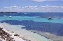 澳大利亚·罗特尼斯岛 丨 网红微笑袋鼠、迷人纯净海域,在《妻子的浪漫旅行》拍摄地,寻找世界上最快乐的