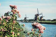 阿姆斯特丹 因水而兴 阿姆斯特丹的精华都在河流,运河的沿岸,乘坐游船穿行在城间,荷兰人数百年的积累与