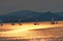 黄昏时分,金灿灿夕阳下,小户海辺公园,边散步边看,帆船比赛训练!