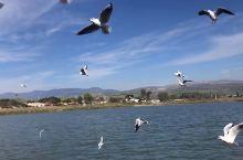 太美了!加利利湖