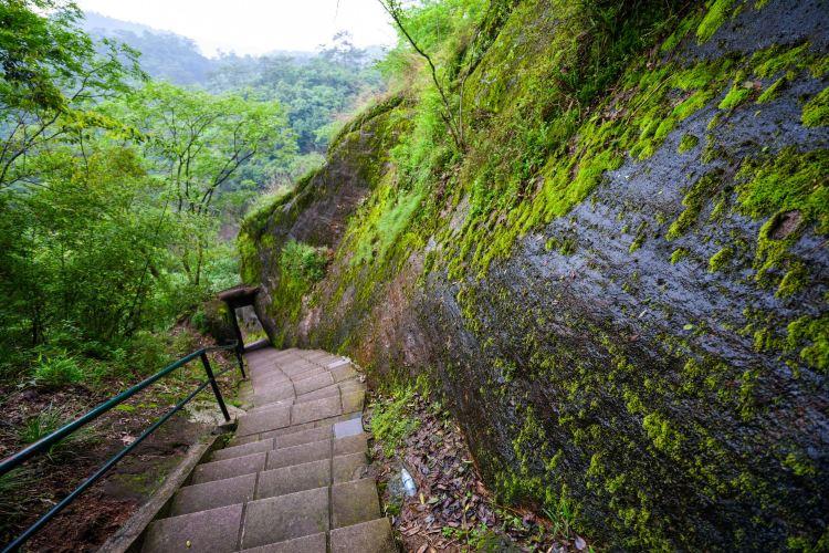 Taoyuan Cave3