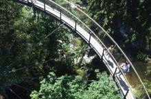 个人觉得里面最大的亮点是吊桥和悬崖的观景台,这里都很高,有恐高症的绝对是一种挑战。园中有一条长213