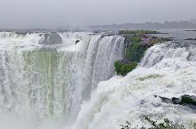 【巴西旅行】伊瓜苏大瀑布是世界上最宽的瀑布,位于阿根廷与巴西边界上伊瓜苏河与巴拉那河合流点上游23千