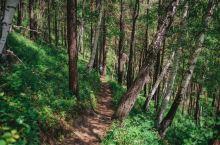 宝石高地其实这里是一条徒步小径 比较适合夏天的时候过来游玩 这里是完全没开发的自然景观 道路也比较崎