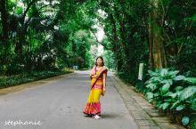 一定要穿一次斯里兰卡的纱丽! 【关于纱丽】穿当地的服饰让你更好的融入当地的生活,纱丽也分档次的,带亮