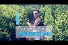 人生第一次踏足江西省,从广州自驾到赣州龙南的虔心小镇,约3.5小时。  景区充满大自然气息,划分了很