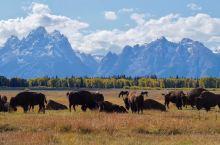 美国大提顿国家公园(Grand Teton National Park),位于怀俄明州北部,黄石国家