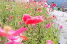 西岭雪山位于我国四川省成都市境内。西岭雪山终年积雪不化,不管夏天、春天,都是冰天雪地。每当下雪时,无
