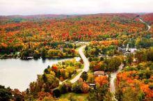气象专家说今年的加拿大将经历暖秋,秋季赏枫的时间将会比往年长一到两周。计划来加拿大赏枫的小伙伴们,不