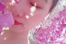 国庆出游 温州雅林植物公园 美哒哒的紫藤花长廊 美轮美奂的风车和薰衣草 小朋友的充气游乐园 几个人一
