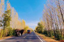 雪乡不只有冬天很美,其实雪乡的秋天也很美的。节日出行是为了放松,为了赏心悦目,所以还是要选择清静又要