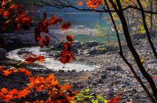 19年10月10日自驾开起寻秋之旅。第一站丹东蒲石河森林公园。