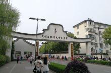 2019年5月1日,游玩乌镇,乌镇西栅景区占地面积三平方公里,毗邻古老的京杭大运河畔,由十二个碧水环