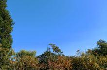 燕郊的蓝天