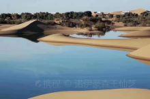 内蒙古阿拉善盟额济纳旗胡杨林八道桥:巴丹吉林沙漠。