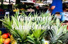 每周五早上9:00至下午2:00,Main Street有本地Farmers Market, 可以买