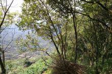 上虞地区的覆卮山景区。 2019年10月份假期,结伴到了上虞覆卮山。一直听到覆卮山景区怎么地美丽,可