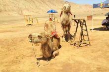新疆吐鲁番之旅