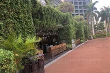 打卡一家新开的酒店,文昌南国温德姆花园酒店,离海岸线最近的地方,有私人海滩,绿色的欧式建筑,服务很好