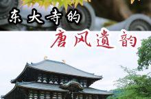 在日本的东大寺,却想起大唐的武则天,这不算巧合。因为东大寺的历史很长,长到可以与中华文化最辉煌的年代