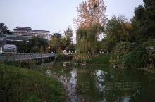 杜甫草堂浣花公园景色宜人,成都的夜晚灯光璀璨