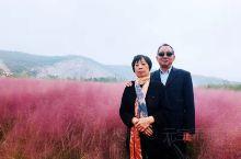 人少景美的南京汤山矿坑公园,现在种上了一大片粉黛乱子草,特地带家人来玩. 不要门票哦!!!