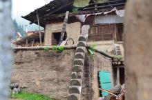 扎尕那的藏族民居。