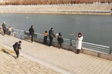 12月29日,周末。带着孩子到最近的渑池县  涧河生态公园游玩,这里游人如织,大家在开心愉悦的氛围中