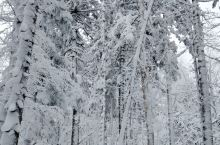 岁月的美丽,在于它必然地流逝,春花,秋月,夏雨,冬雪…… 拎起岁月厚重的衣角,追寻生命消隐的芳菲