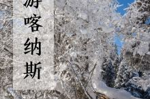 随便一停就能遇到神仙美景,喀纳斯美得有点过分啊!  地处新疆北部的喀纳斯,冬天零下20度的气温吓跑一