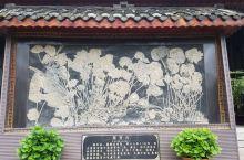 【多彩贵州】青岩古镇(四):古生物化石   海百合、菊花石、贵州龙,都是古生物化石。