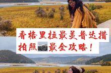 超强整理!教你解锁普达措拍照最全攻略!  普达措国家公家是香格里拉的精华景点,不仅拥有地质地貌、湖泊
