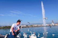 春江水暖鸭先知—记日内瓦的钟与湖