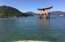 嚴島神社—充滿鹿的世界文化遺產,日本三景的海上鳥居。 嚴島神社是一個建在潮間帶的神社,最有名的是會隨