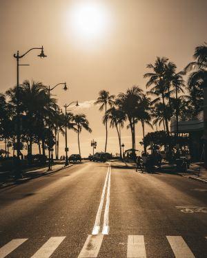 호놀룰루,추천 트립 모먼트