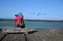 《来自文莱的诱惑:我真的想要去旅游……》  我是孤独浪子,希望我的拍拍让您有所收获。 漫游神州31载