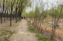 初春的季节一起行走于江湖